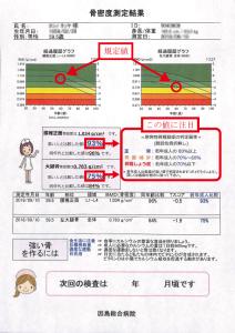 DXAレポート
