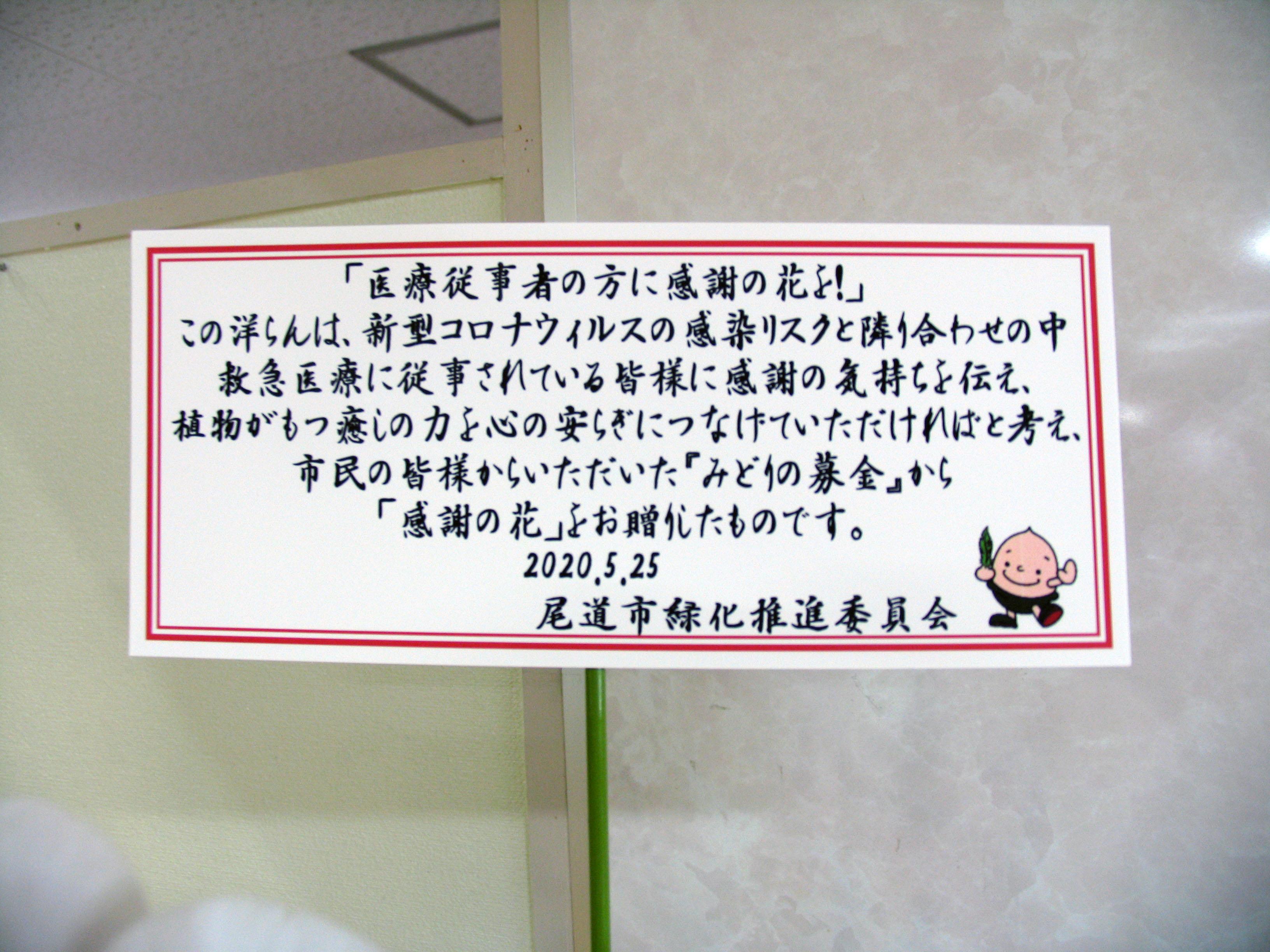 尾道 市 コロナ 感染